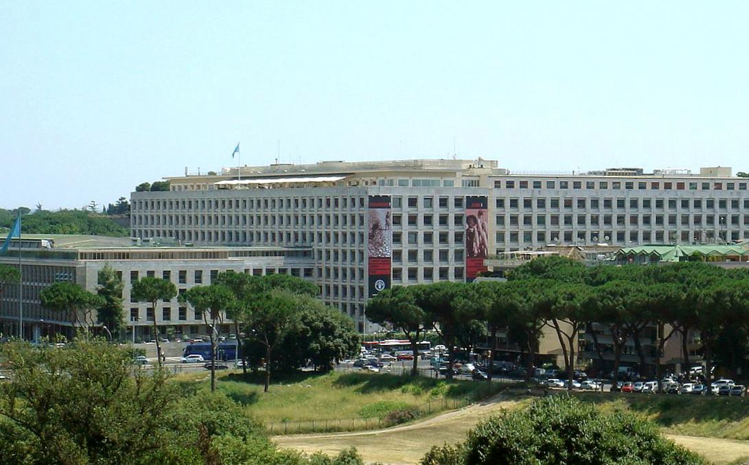 La FAO y su sede central en Roma