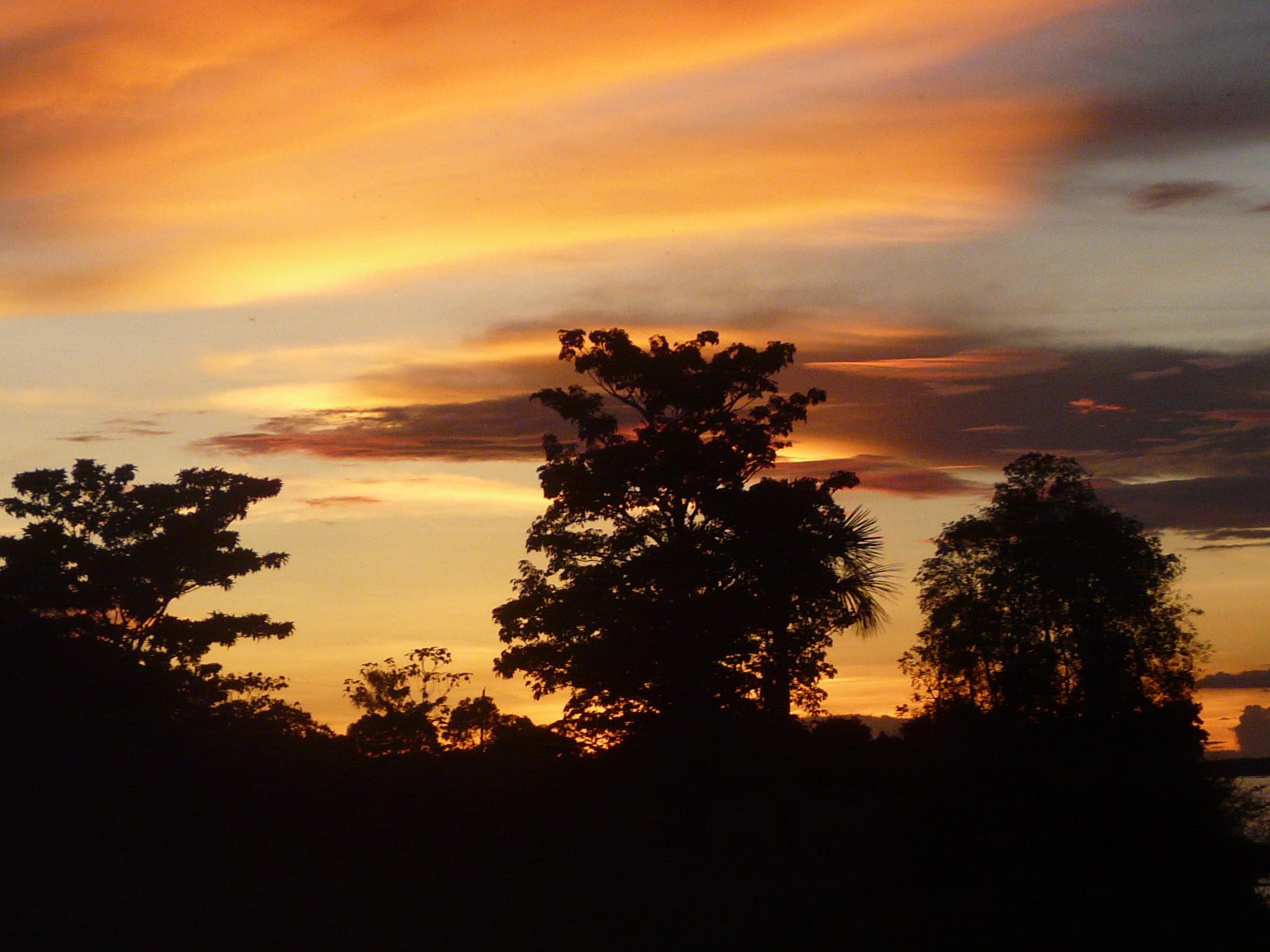Sunset in Amazonia
