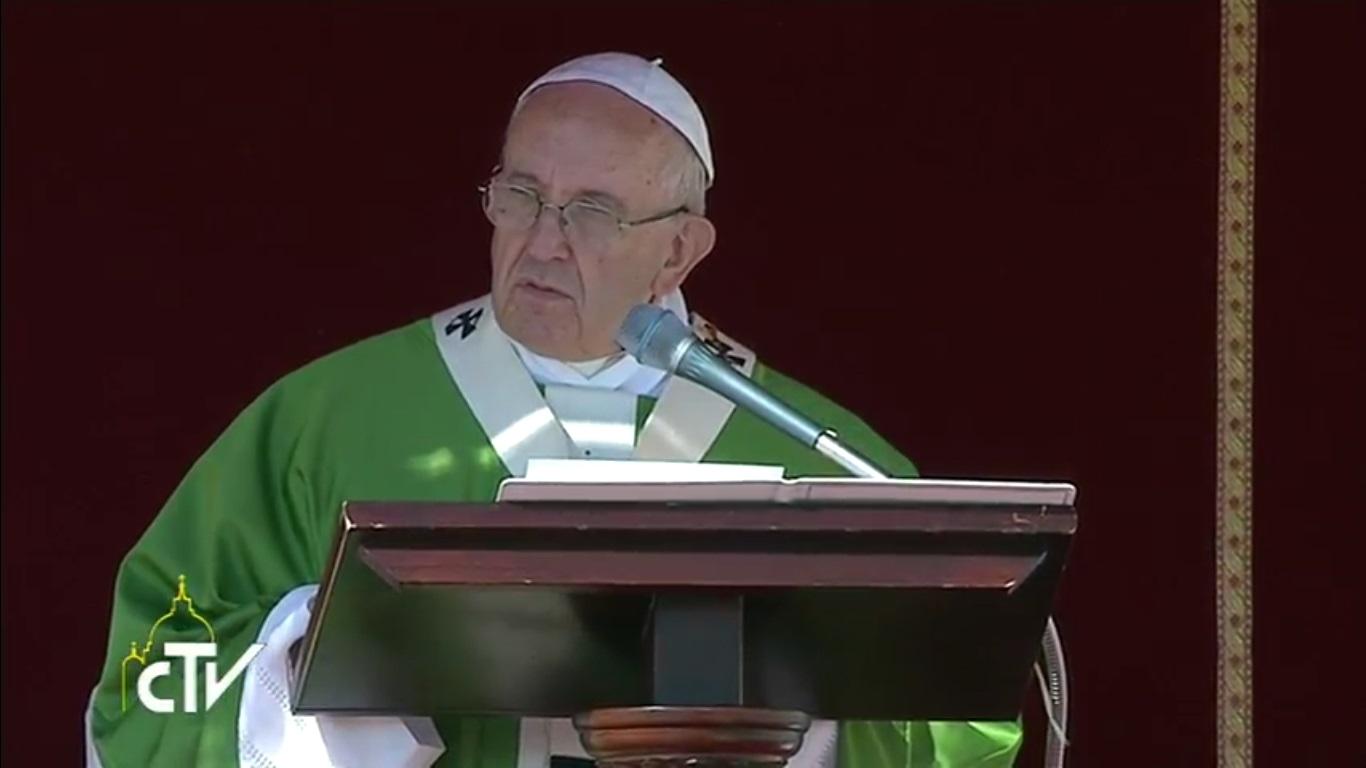 El Papa en el Jubileo de los catequistas