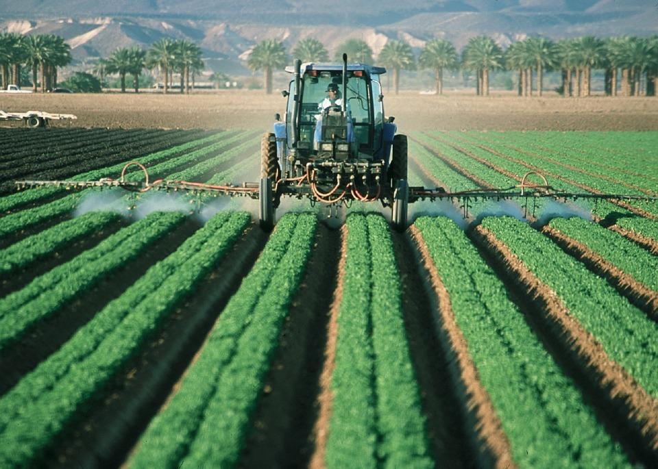 Respetar los ritmos de la vida agrícola, el descanso dominical y familia