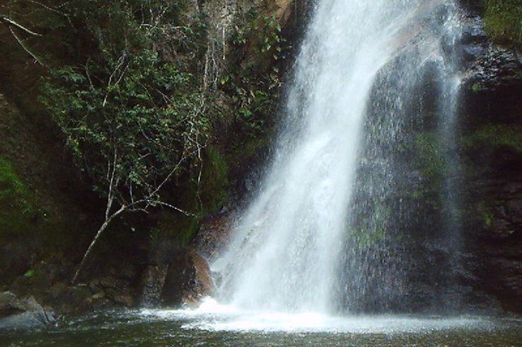 Andorinha, Brasil. Wikimedia Commons
