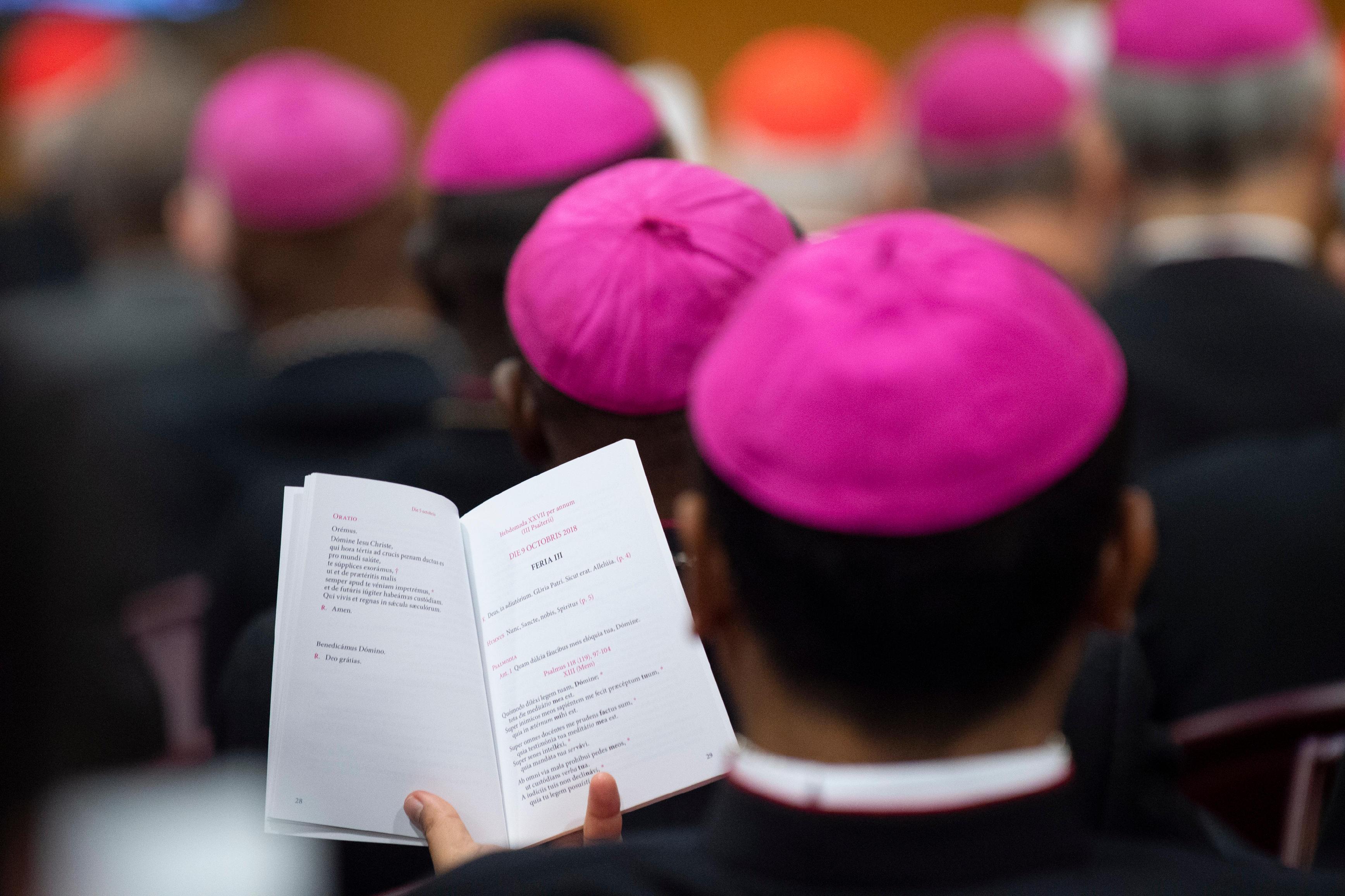 Sínodo de los Obispos © Vatican Media