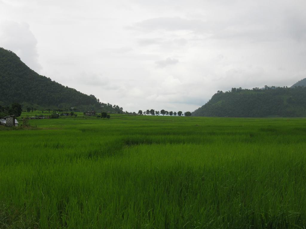 Simara, distrito de Bara, Nepal Wikimedia Commons/Jaryiah Khan