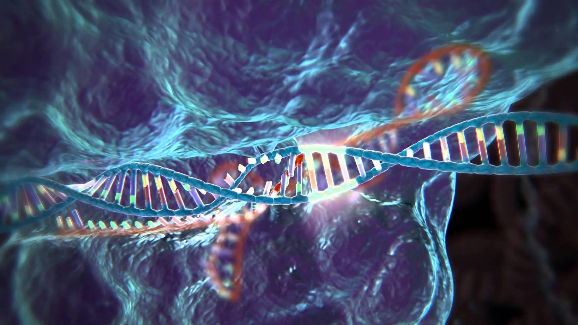 Herramienta CRISPR © Chile bio