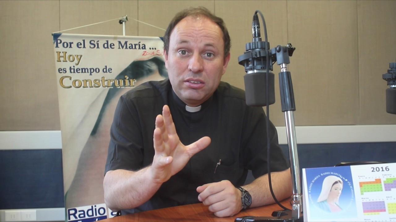 Padre Carlos Irarrázaval, ex director de Radio María