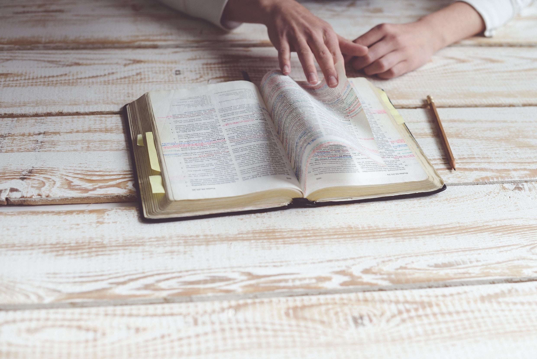 Scripturae Sacrae affectus Carta apostólica del Papa