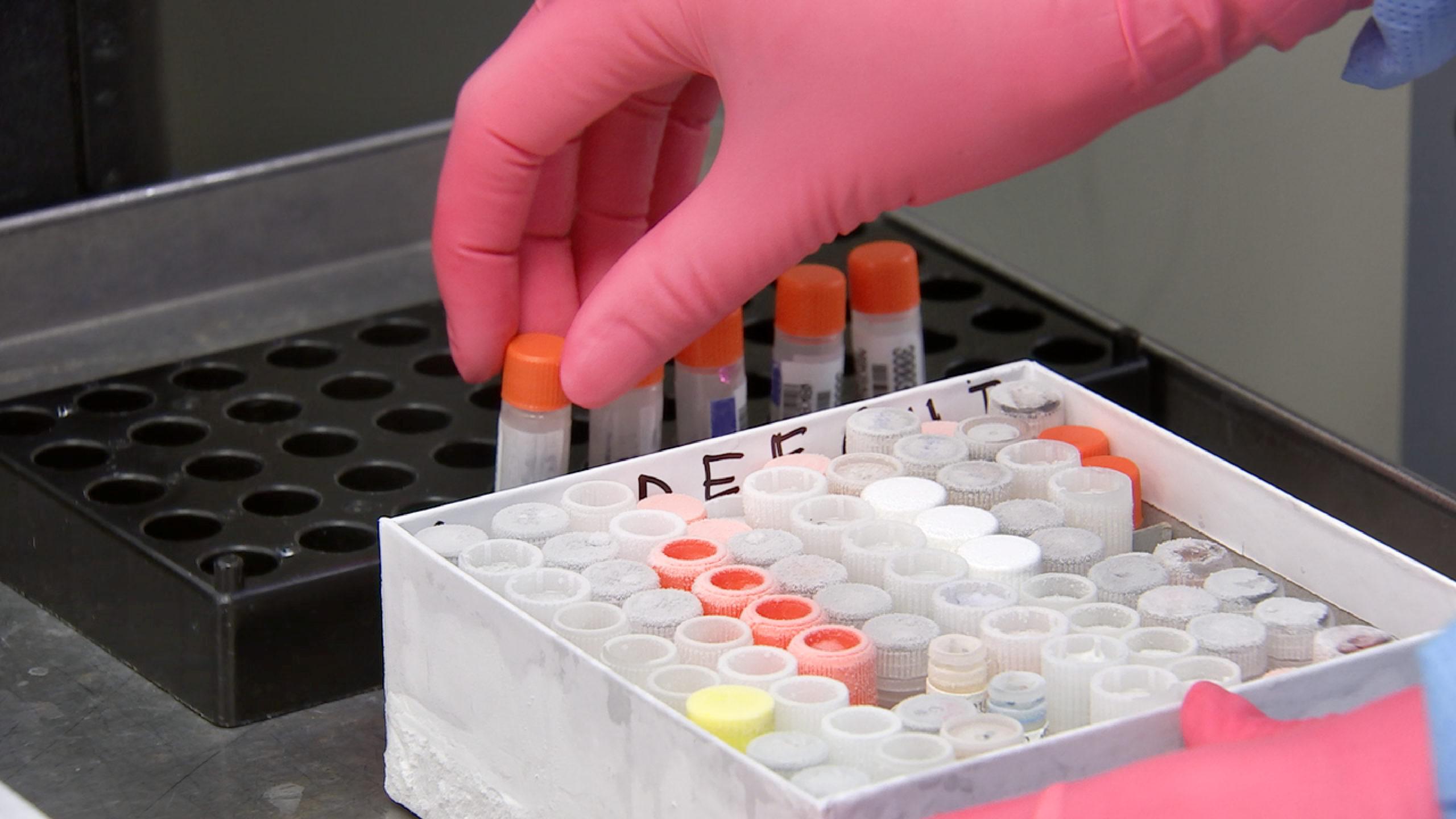 estados unidos vacuna covid