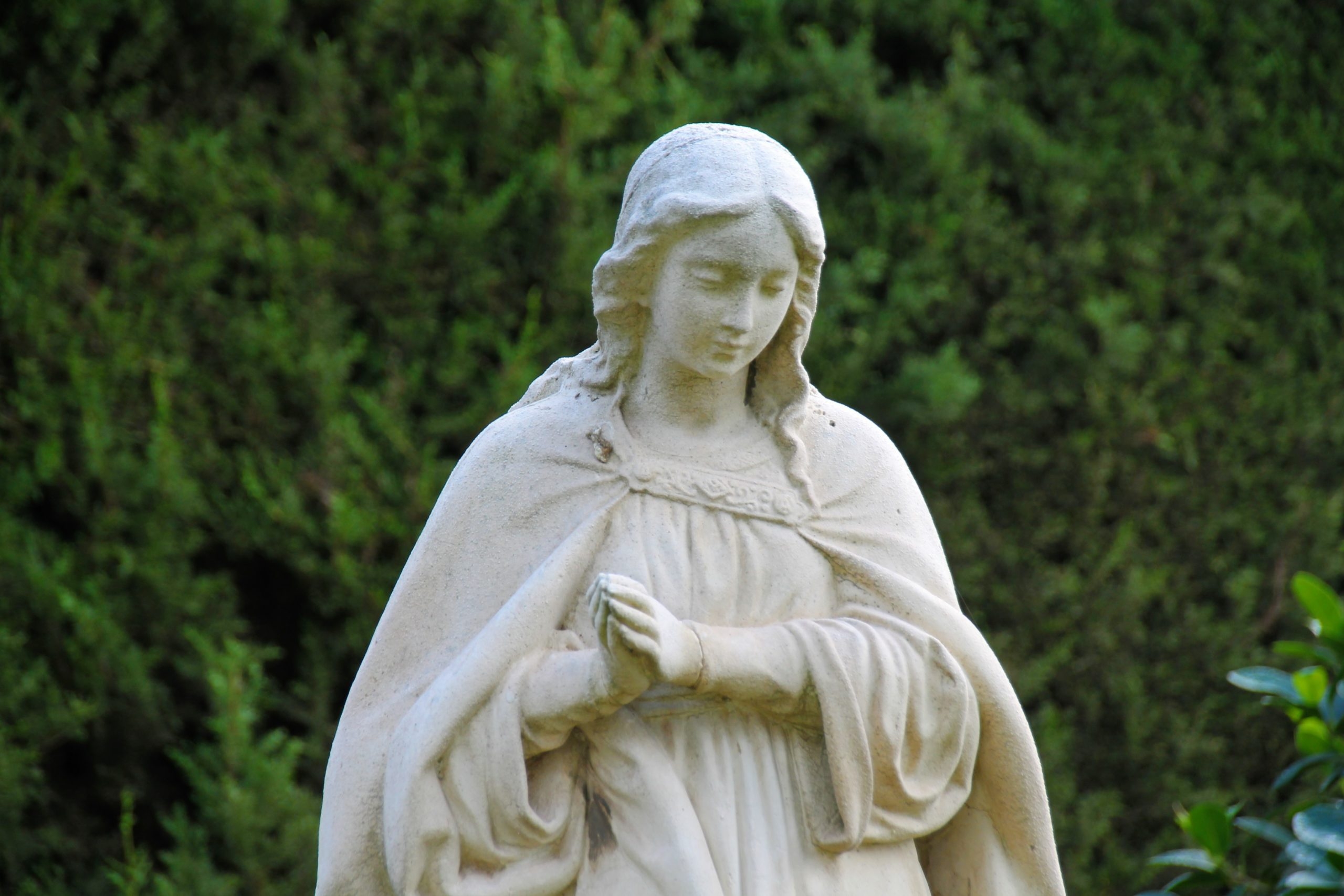 Fiesta Inmaculada Concepción